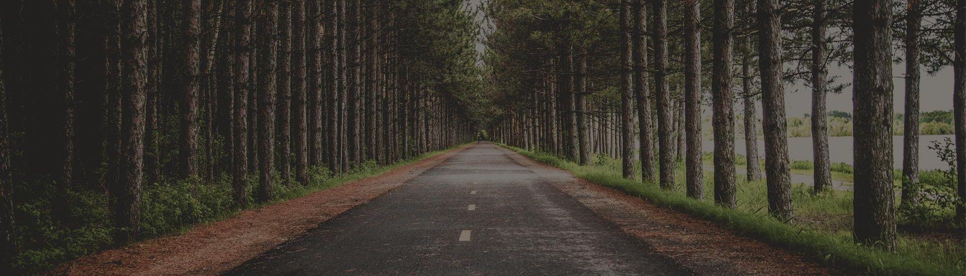 Inex Rent A Car - Road